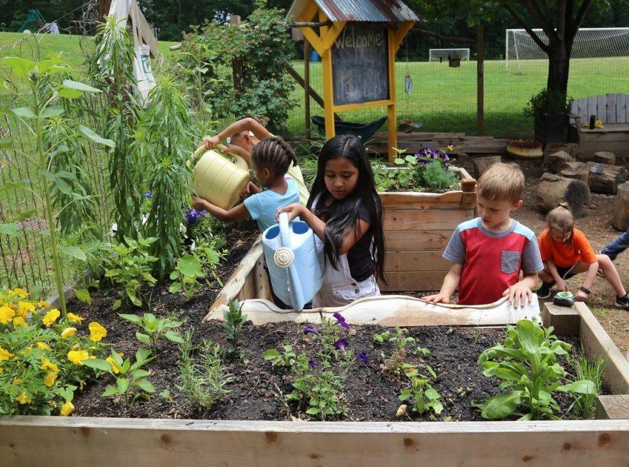 أهمية الحديقة المدرسية
